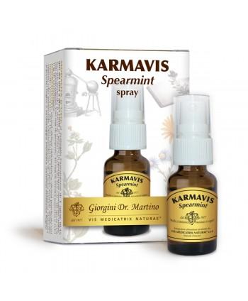 Karmavis Spearmint Liquido...